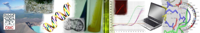 Diversidad Microbiana Y Microorganismos De Ambientes