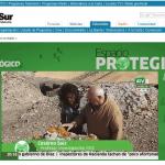 El biodeterioro de los bienes culturales, a revista en Espacio Protegido