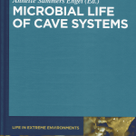 Miembros del grupo Microbiología Ambiental y Patrimonio Cultural contribuyen a un nuevo volumen de la serie Life in Extreme Environments de De Gruyter