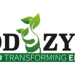 Lanzamiento del proyecto WoodZymes