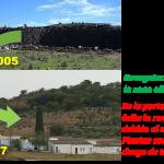 Rehabilitación de escombrera en la mina de Tharsis